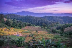 chiang mai, thajsko, spievodca, ivana greslikova, blog, tony dubravec, cestovatelsky blog