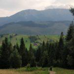 vysoke tatry, strbske pleso, tatry, slovensko, cestovanie, cestovatelsky blog, tony dubravec, bloger roka, blog, solisko, bachledova, chodnik korunami stromov