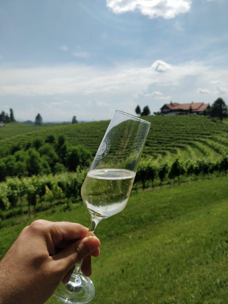 slovinsko, jedlo, steak, gastro, dovolenka, cestovatelsky blog, cestovanie, bloger, tony dubravec, puklavec, jeruzalem